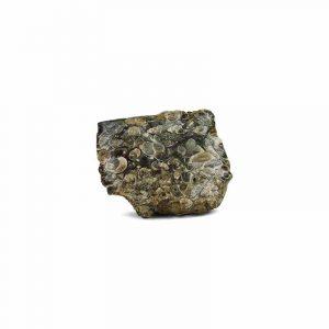 Ruwe Agaat Turritella Edelsteen 3-10 cm (1 kg)