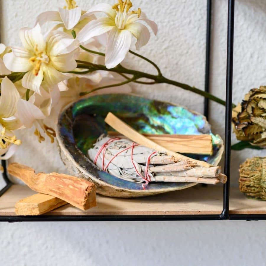 palo santo abalone schelp witte salie smudge