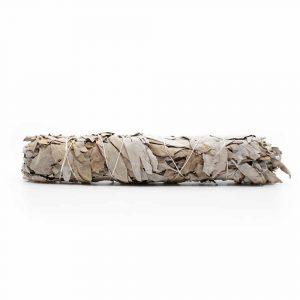 Witte Salie Smudge Stick Groot