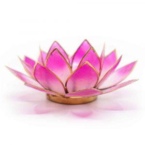 Lotus Sfeerlicht 2-Kleurig Wit / Roze Goudrand