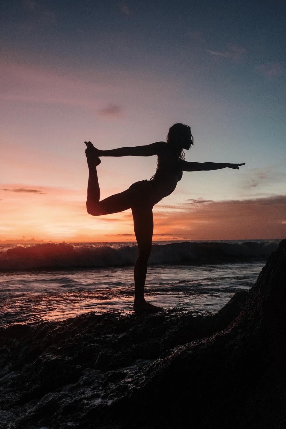 yogi bij zonsondergang
