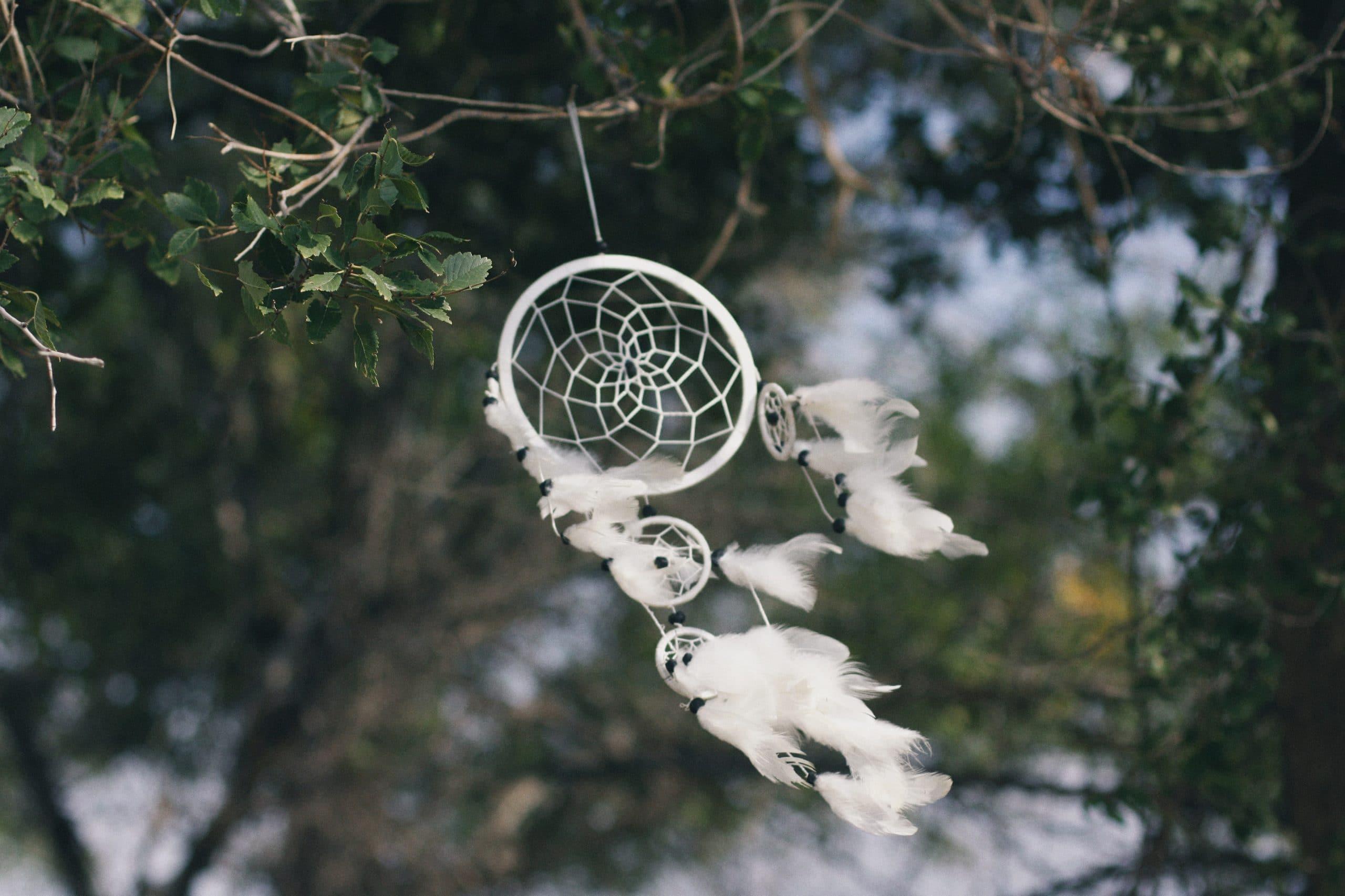 dromenvanger ophangen in de tuin