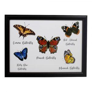 Schootkussen – Laptray – Vlinders (43 x 33 cm)