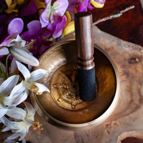 boeddhisme symbool wiel van dharma
