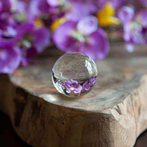 glazen bol met bloemen